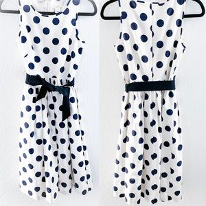 J Crew Polka Dot Vintage Inspired Dress